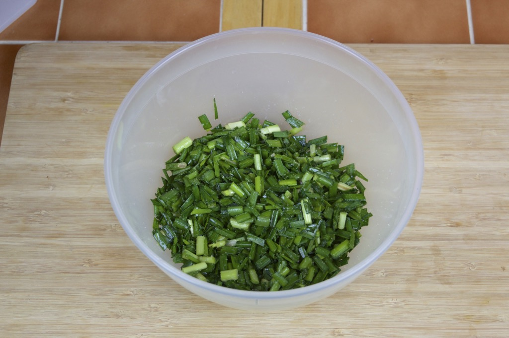 chopped chinese chives